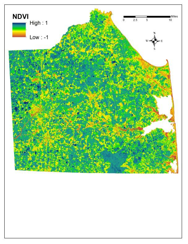 An example of NDVI map that was generated from Landsat 7 data obtained on 8/14/2002