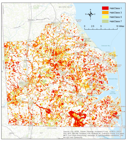 Delmarva Fox Squirrel potential habitat map based in LiDR analysis in Sussex County, DE